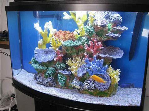 Decoration Of Aquarium by Decorations For Fish Aquariums Aquarium Design Ideas
