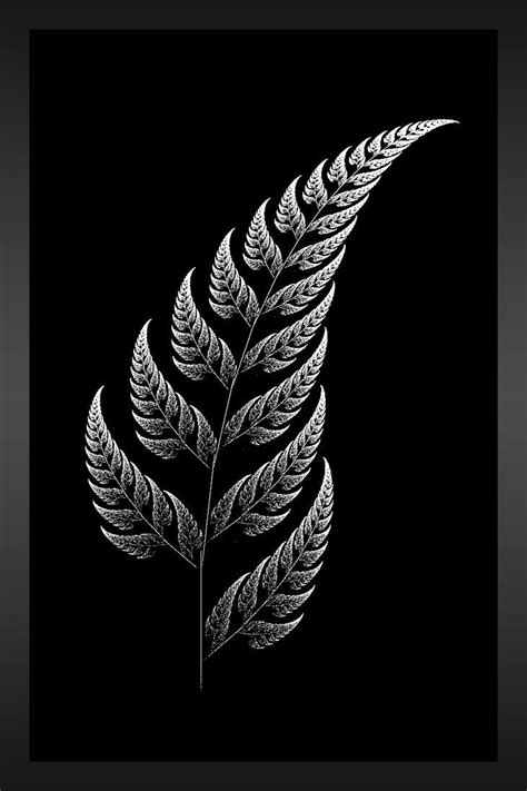 tattoo pen nz drawn fern all blacks pencil and in color drawn fern all