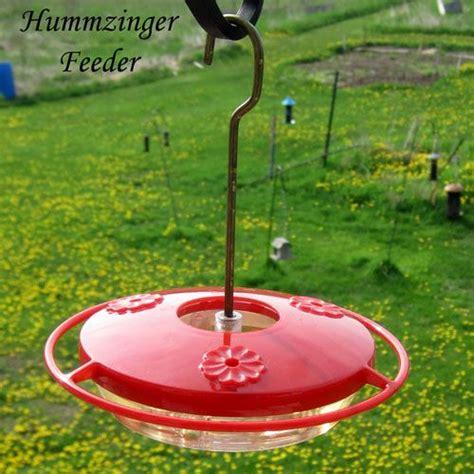 hummingbird feeder ratio 1000 ideas about hummingbird food on hummingbird nectar recipe