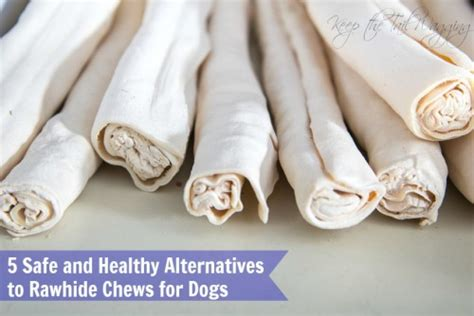 can puppies chew rawhide 5 safe and healthy alternatives to rawhide chews for dogs keep the wagging