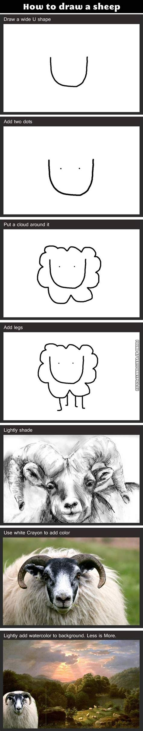 how to sheep how to draw a sheep pics