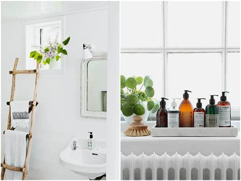 flores para decorar o banheiro decore o banheiro plantas ideias designer de interior