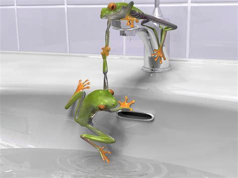 зеленые лягушки в раковине обои для рабочего стола