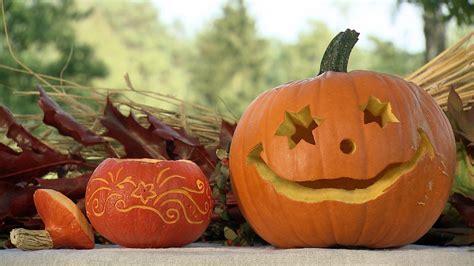 halloween kuerbisse basteln ndrde ratgeber