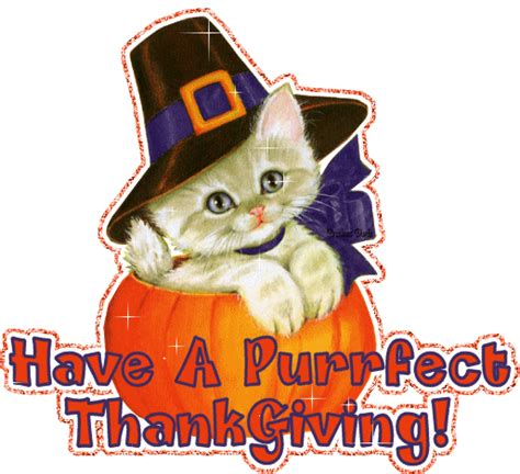 happy thanksgiving cats gallery for gt cat happy thanksgiving