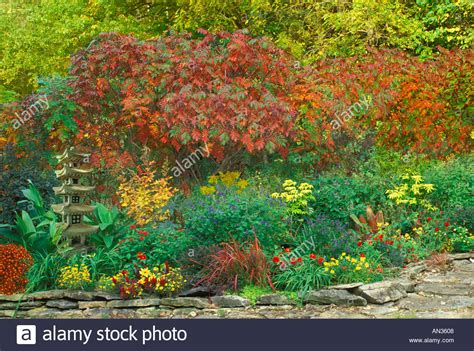 autumn flower garden with sumac trees and japanese