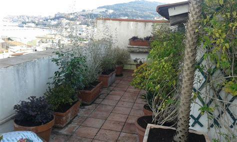 terrazze verdi terrazze verdi e giardini pensili vivaio golfo