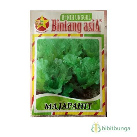 benih bintang asia sawi pahit majapahit 25 gram jual tanaman hias