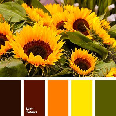 colors of sunflowers color of sunflowers color palette ideas