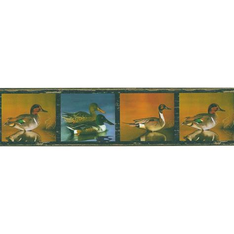 cat wallpaper borders murals brewster multi color duck pond wallpaper border sle