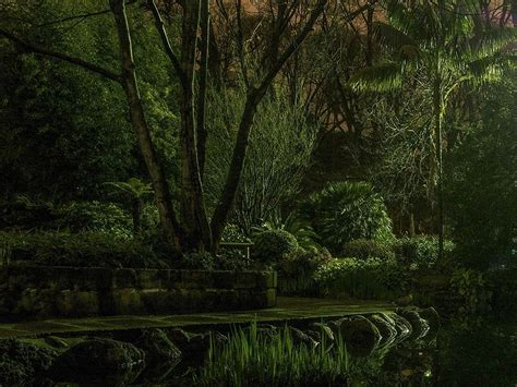 day 26 city of gold luke tannous photography project 365 garden picture night photo national geographic photo