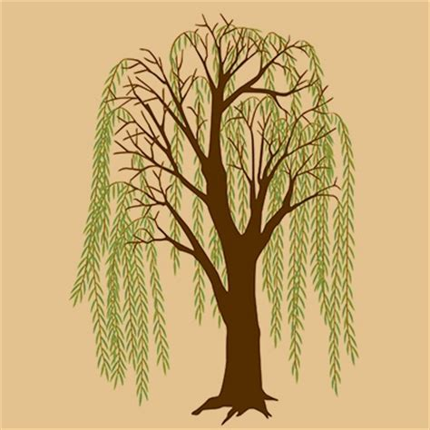 weeping willow tree tattoo designs amazing weeping willow tree design ideas and meaning