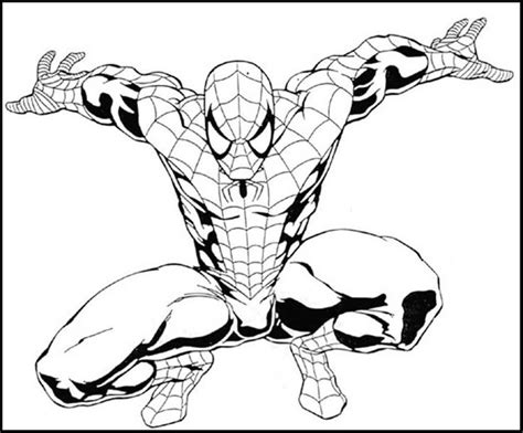 spiderman images  pinterest coloring pictures