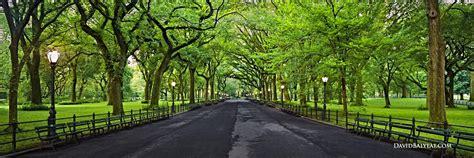 Landscape Park Definition New York City Archives David Balyeat Photography Portfolio
