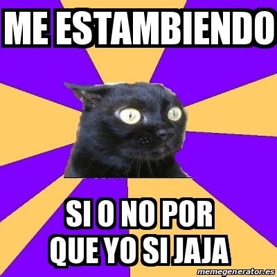 Anxiety Cat Meme Generator - meme anxiety cat me estambiendo si o no por que yo si