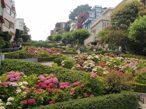 San Francisco Garden by Streets Architecture Garden Buildings San Francisco