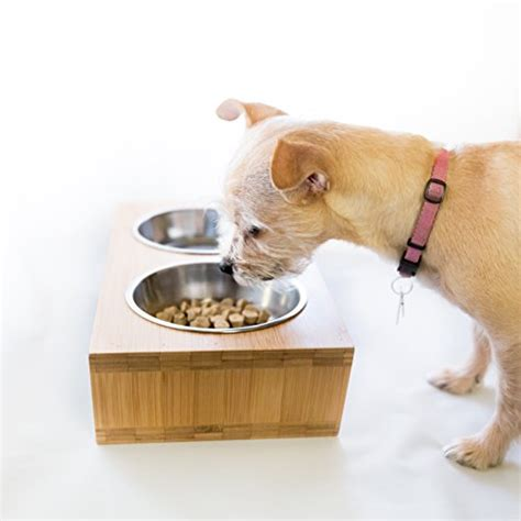 Finepet Pet Feeder Cat And premium elevated and cat pet feeder bowl raised stand comes with two stainless