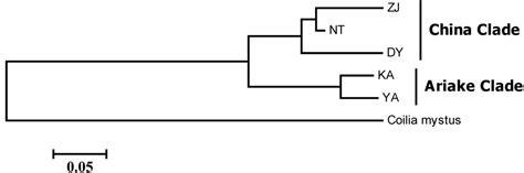 section 27 dispersal order section 27 dispersal order 28 images plant