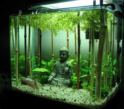 Aquarium Dekorieren Ideen by Aquarium Einrichtung Sorgt F 252 R Das Wohlf 252 Hlen Der