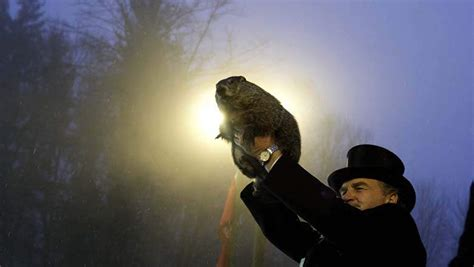 groundhog day live groundhog day prediction 2017 live how to