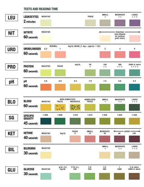 ua colors urinalysis test color chart learn parallax