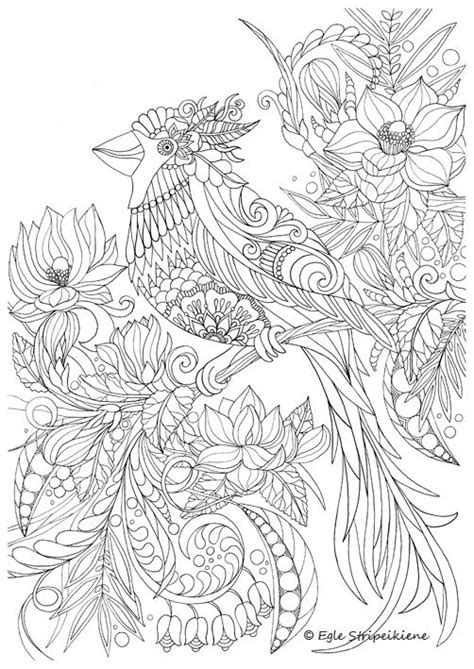 coloring book for adults publishers coloring birds and coloring on