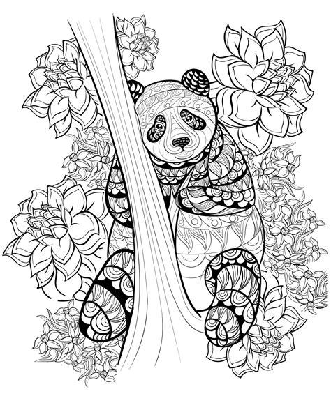 panda coloring page pdf zentangle panda coloring sheet printable coloring