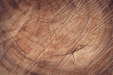 wallpaper abstrak kayu gambar pohon alam abstrak naik antik gandum
