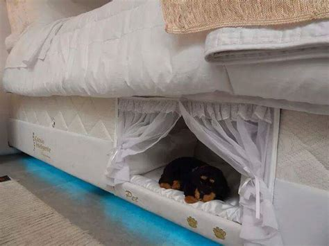 human sized dog bed a cleverly designed comfy pet bed that s built right into
