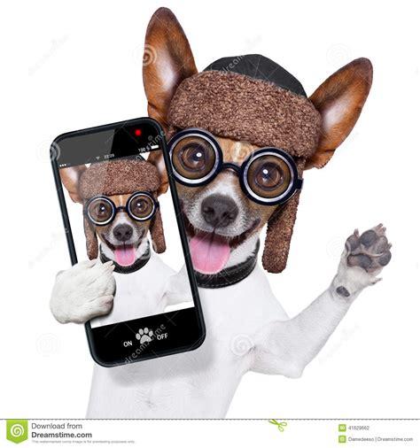 Kaos Selfie I M Stupid dumb selfie stock photo image 41629662