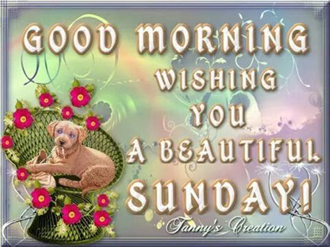 sunday good morning beautiful good morning wishing you a beautiful sunday quote pictures