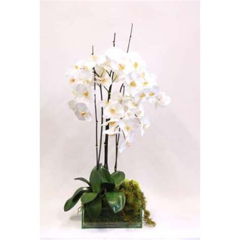 somptueuse composition d'orchidées créée par emilio robba