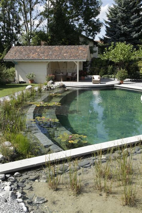 natural swimming pool how to build a natural swimming pool diy