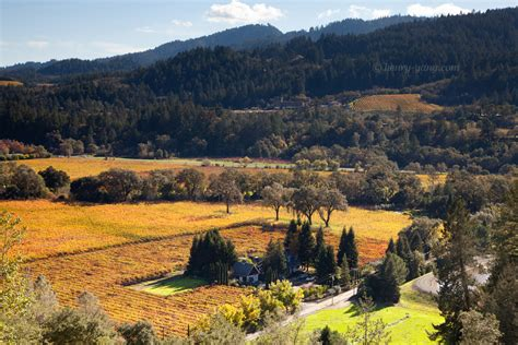 california fall color napa valley fall color california