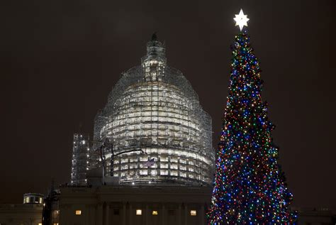 lighting of capitol christmas tree wtop