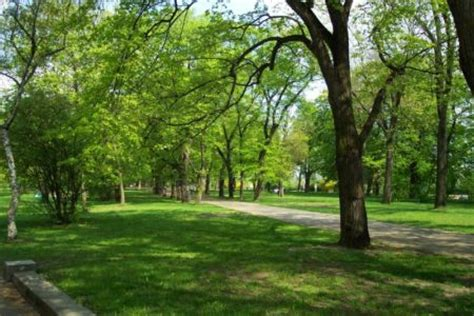 imagenes zonas verdes paisajes posibles bosques y 193 reas verdes urbanas