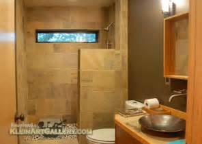 vibrant ideas bathroom shower budget home design modern bathrooms designs small vanity storage