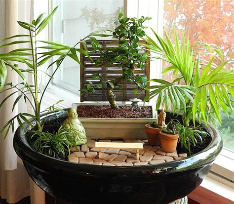 miniature indoor plants best plants for miniature gardens resource guide