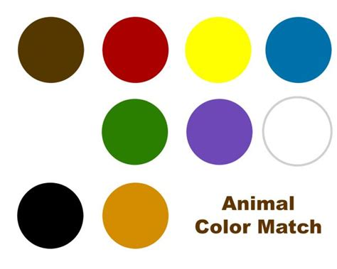 colors that match brown what color matches brown 28 images colors that match