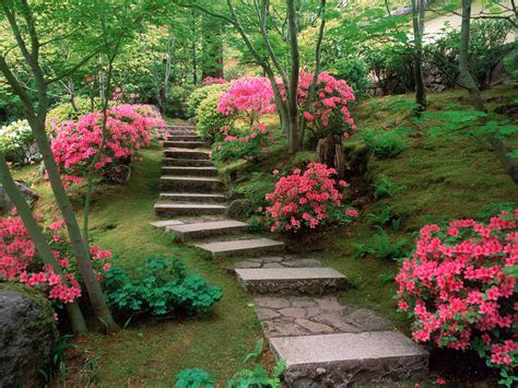 Flower Garden In Japan Azaleas Japanese Garden Wallpapers Hd Wallpapers Id 5530