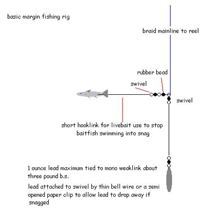 carp fishing rigs diagrams 82 best images about fishing rigs knots on