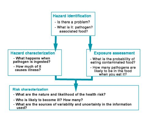 issue based risk assessment template building a planter box emergency evacuation drill form