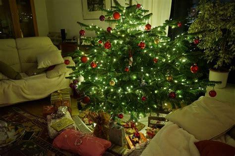 eine gurke am weihnachtsbaum unsere x mas traditionen