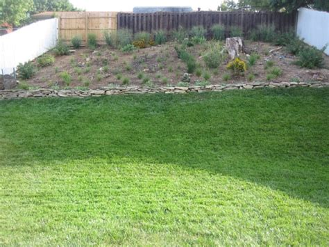 Landscape Fabric Before Or After Planting Do I Need To Lay Landscape Fabric Ground Cover