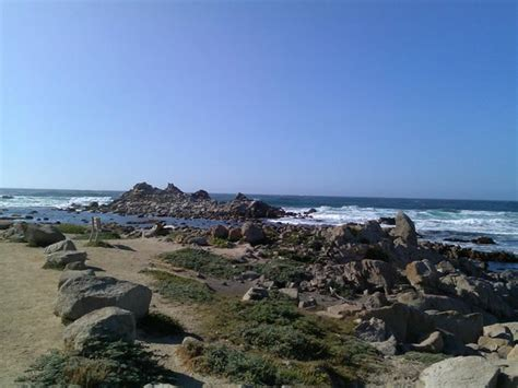 Sea Inn And Cottages Pacific Grove Ca by Pacific Grove Picture Of Sea Inn Cottages