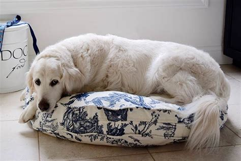 dog beds for people dog beds for people 0comment 14 people found this helpful