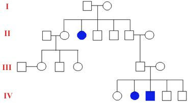 the open door web site : ib biology : genetics : pedigree