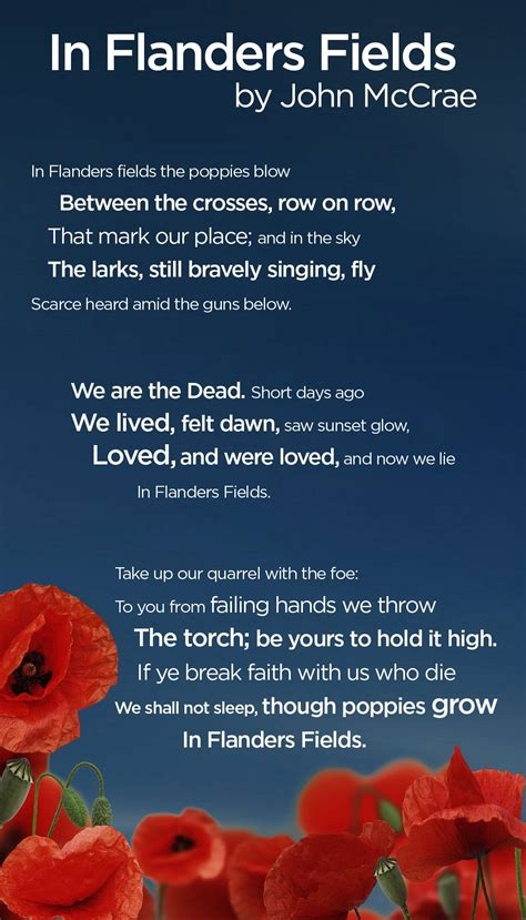 printable version of flanders fields remembrance day began as a modest tribute to terrible wwi