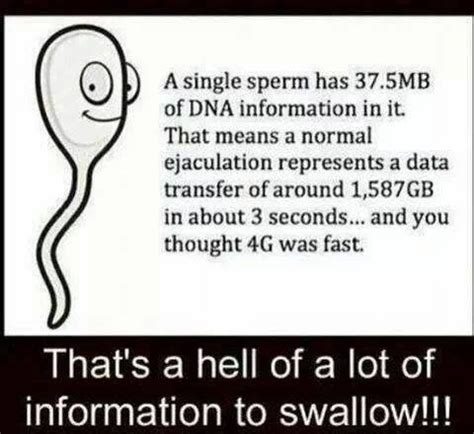 Sex Joke Memes - a single sperm has 37 5mb of dna funny dirty adult jokes