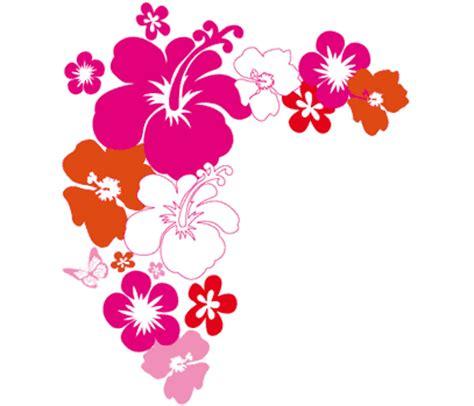 imagenes flores hawaianas flor hawai imagui